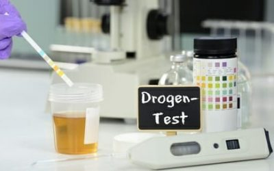 Bundeswehr Einstellungstest Drogentest: Alle Infos