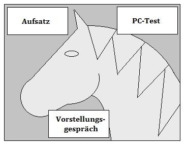 Grafik Bundeswehr Tiermedizinischer Fachangestellter Einstellungstest